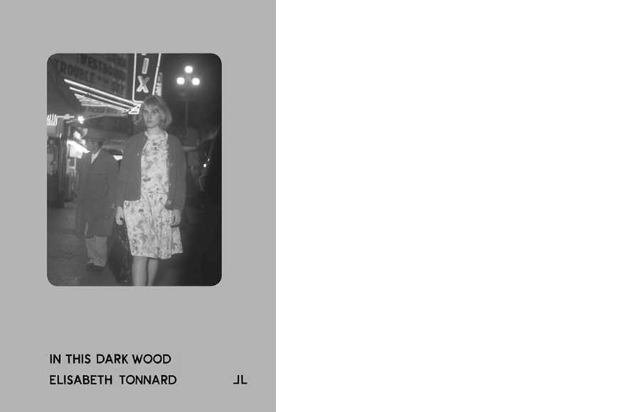 Cover In This Dark Wood - Elisabeth Tonnard