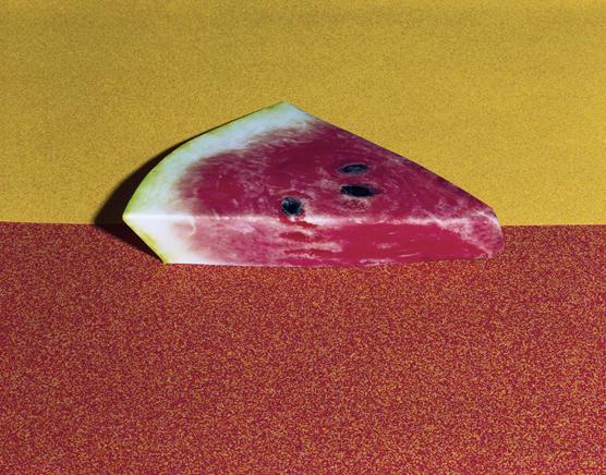 watermelon 2013 c daniel gordon courtesy of wallspace new york